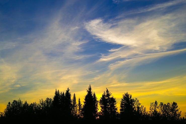 sunset (2 of 8)