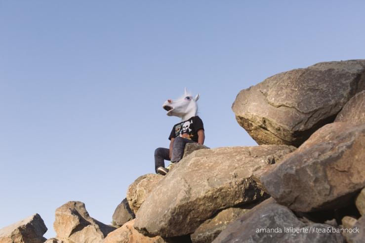amandalalibertephotography_unicorns-10