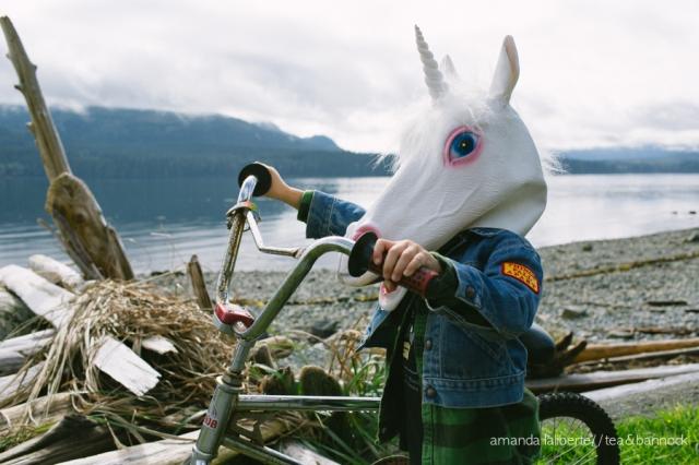 amandalalibertephotography_unicorns-2