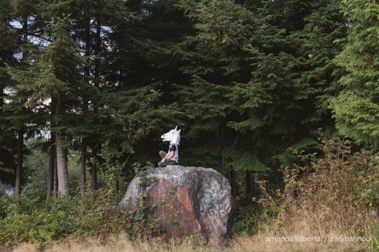 amandalalibertephotography_unicorns-4