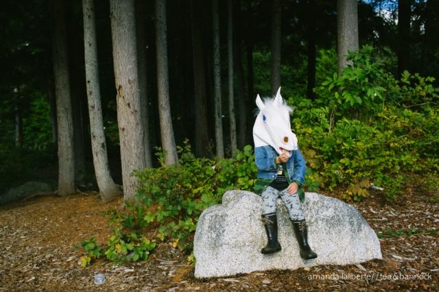 amandalalibertephotography_unicorns-5
