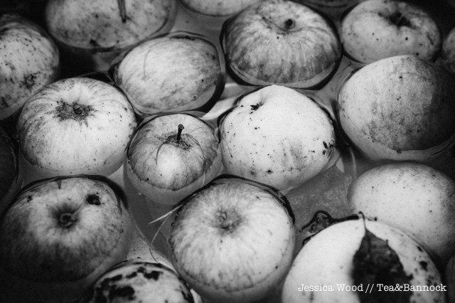jessica-wood-apple-juice-press-tea-bannock-2
